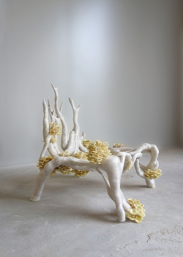 Mycelium Chair  © Eric Klarenbeek, Studio Klarenbeek & Dros