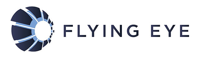 logo Flying Eye